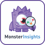 MonsterInsights